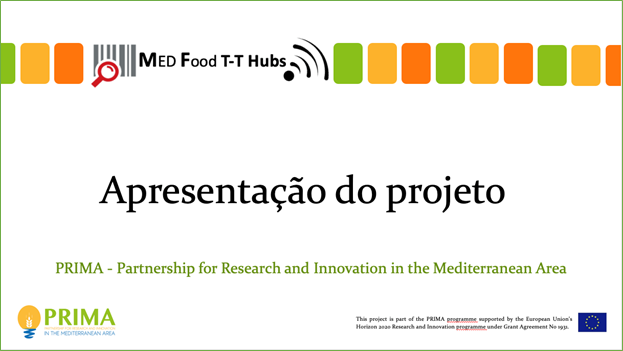 Focus Group meeting in Portugal